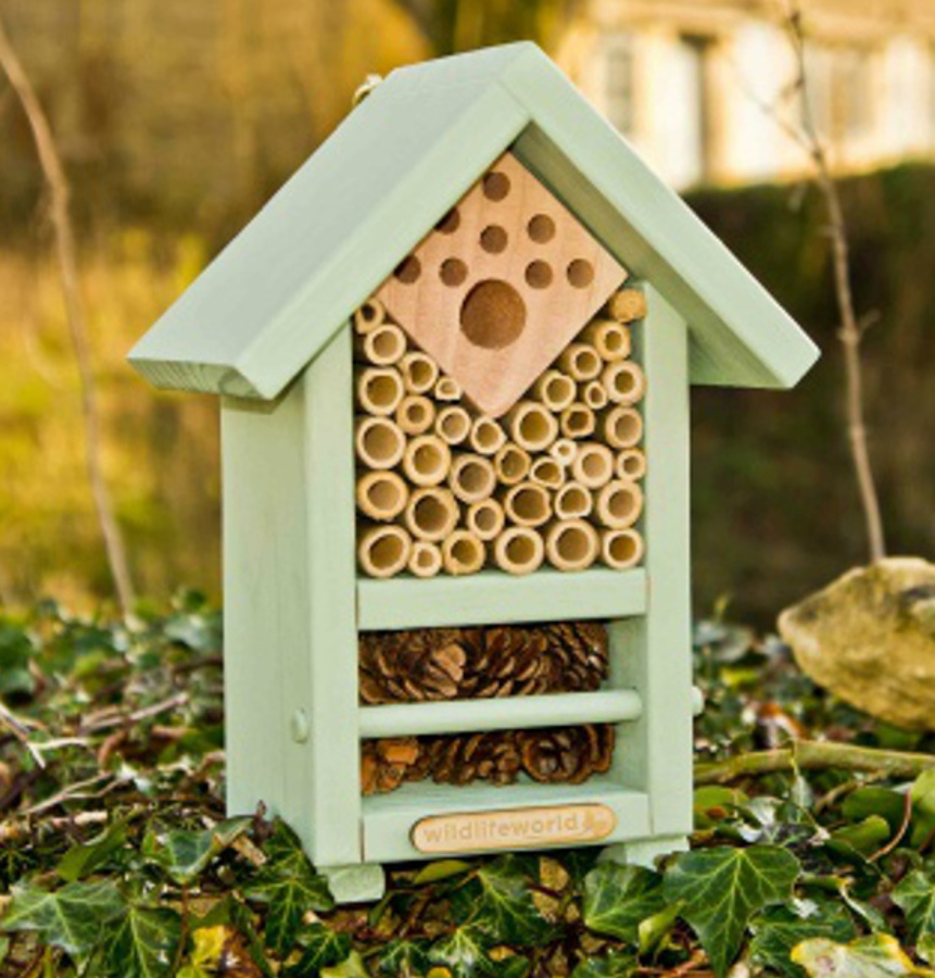 Image of Bee & Bug Biome