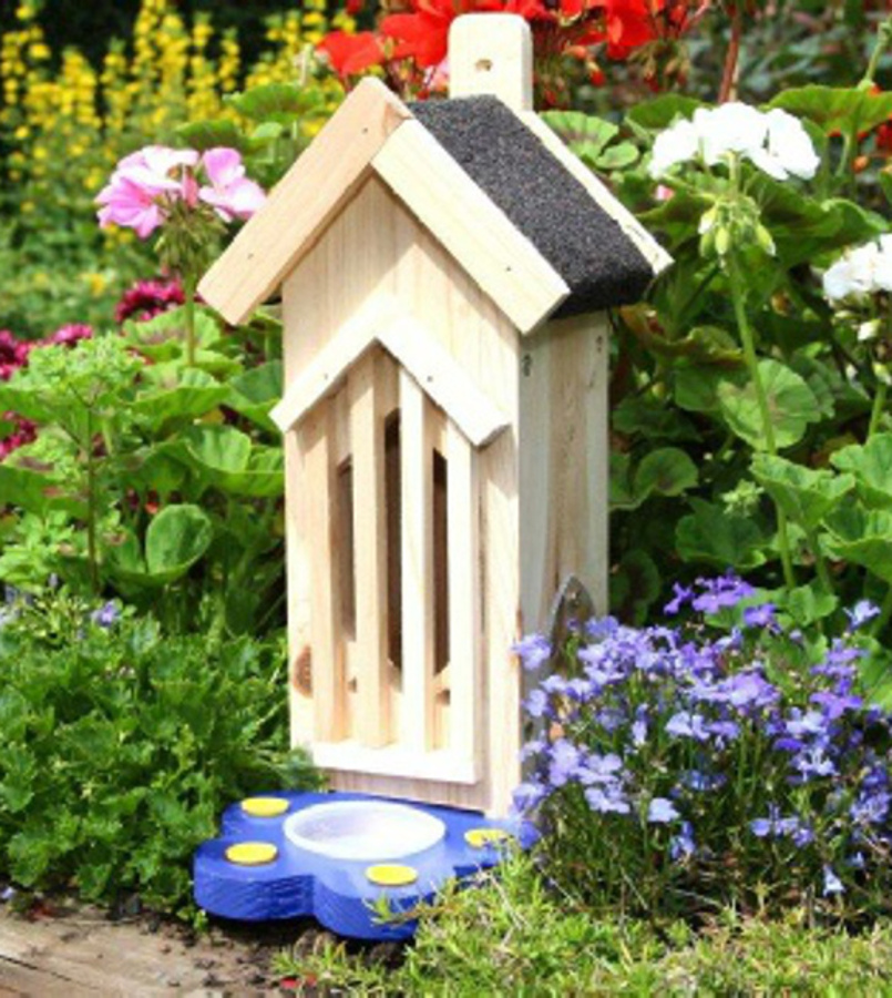 Image of Butterfly & Bug House