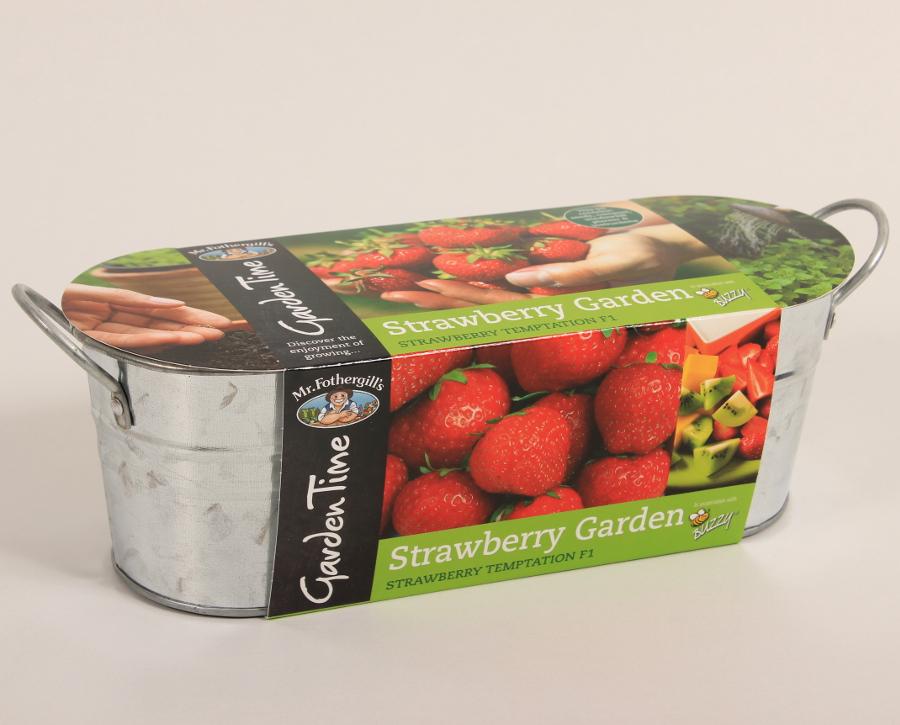 Image of Mr Fothergill's Garden Time Windowsill Kit - Strawberry
