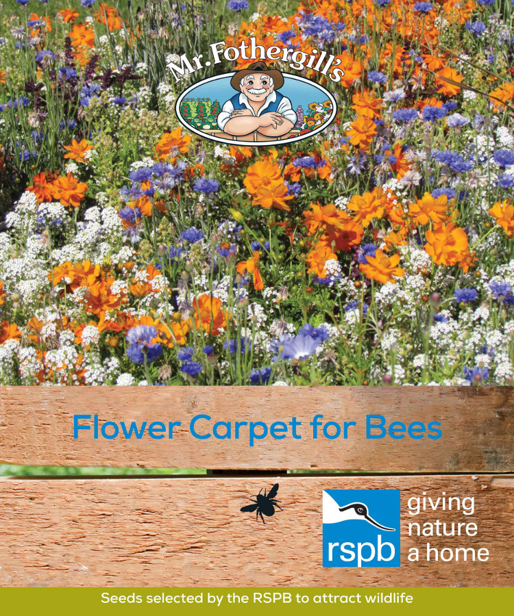 Image of Mr Fothergill's RSPB Seed Mix - Flower Carpet for Bees