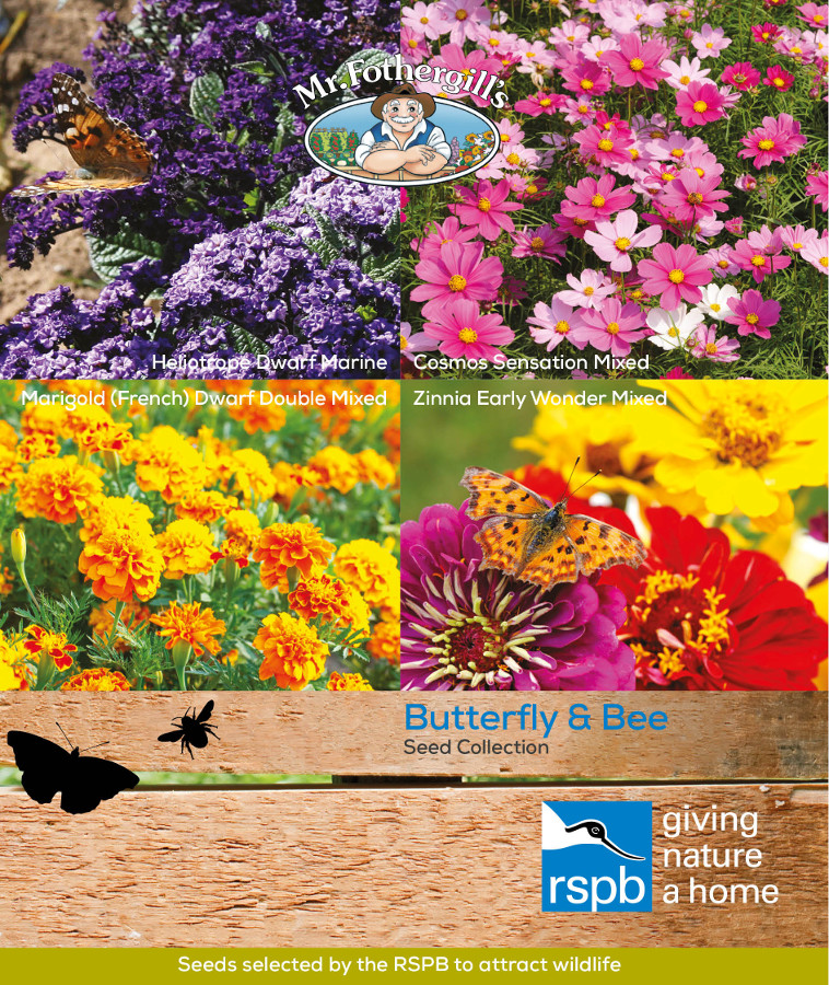 Image of Mr Fothergill's RSPB Seed Mix - Butterfly & Bee attracting Collection