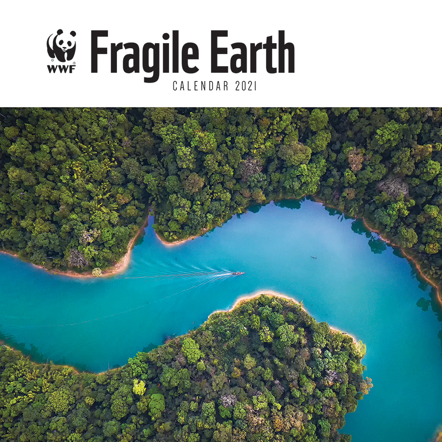 WWF Fragile Earth 2021 Wall Calendar