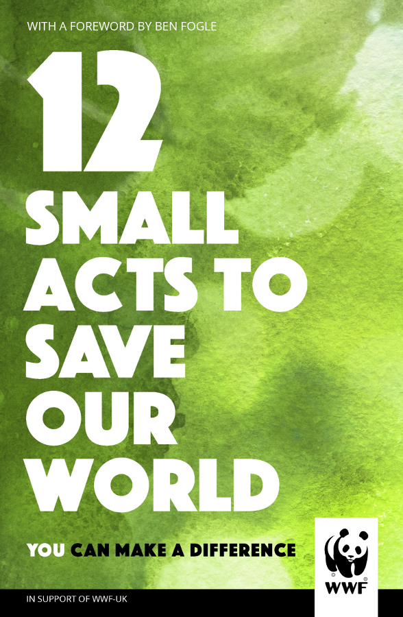 Image of 12 Small Acts to Save Our World Hardback Book