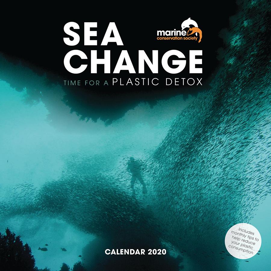 Sea Change MCS Wall Calendar