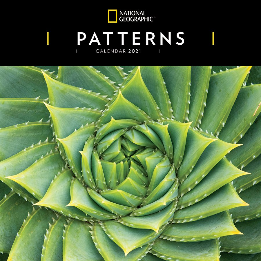 National Geographic 'Patterns' Wall Calendar 2021