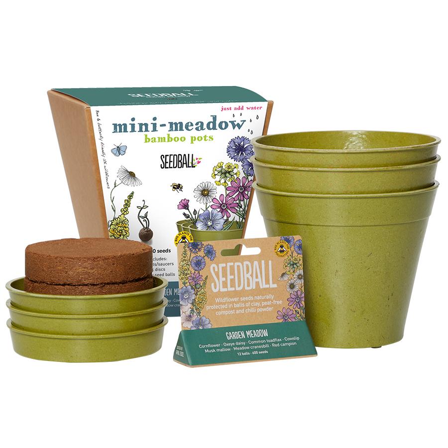 Garden Meadow Seedball & Pots Set