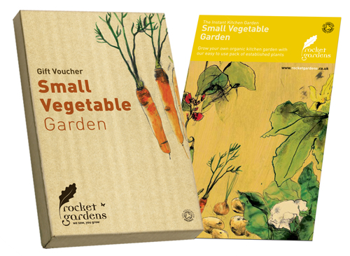 Image of Instant Small Vegetable Garden