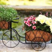 Smart Garden Traditional Metal Trike Planter