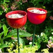 Bird Feeder Cup - Red