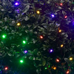 Solar Powered 50 Coloured LED String Lights