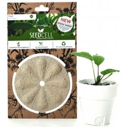 ECO Seedcell - Sage test