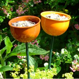 Bird Feeder Cup - Orange