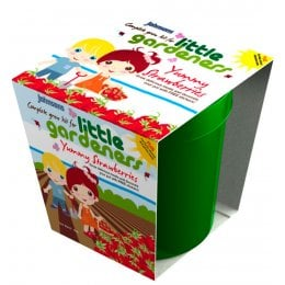 Johnsons Little Gardeners Grow Pot - Yummy Strawberries