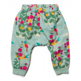 Paradise Birds Jelly Bean Joggers