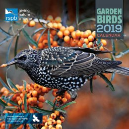 RSPB British Garden Birds 2019 Wall Calendar