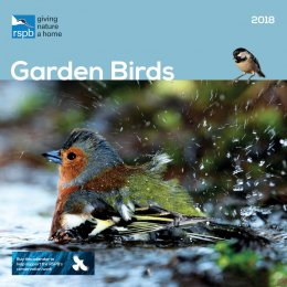 RSPB British Garden Birds 2018 Wall Calendar