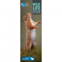 RSPB British Wildlife 2019 Slim Wall Calendar