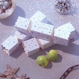 Handmade White Chocolate Sprout Filled Crackers - Pack of 6