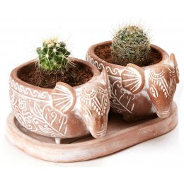 Terracotta Elephant Herb Pot Set