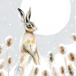 Moonlit Hare Charity Christmas Cards - Pack of 8