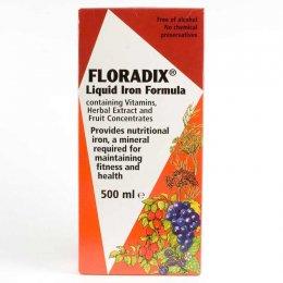 Floridix Liquid Iron Formula 500ml test