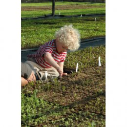 Instant Childrens Vegetable Garden