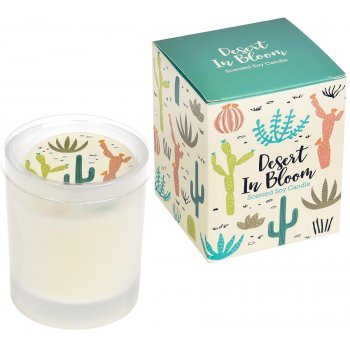 Desert In Bloom Boxed Scented Soy Candle - Lime & Bayleaf