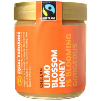 Equal Exchange Chilean Ulmo Blossom Honey 500g