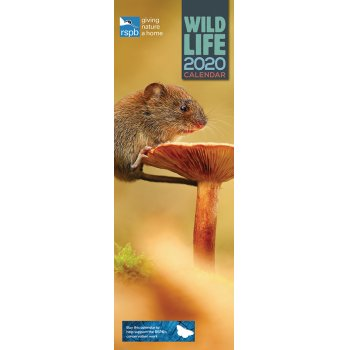 RSPB British Wildlife 2020 Slim Wall Calendar
