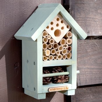 Bee & Bug House