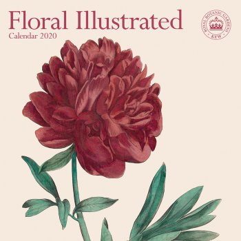 RBG Kew Floral Illustrated 2020 Wall Calendar