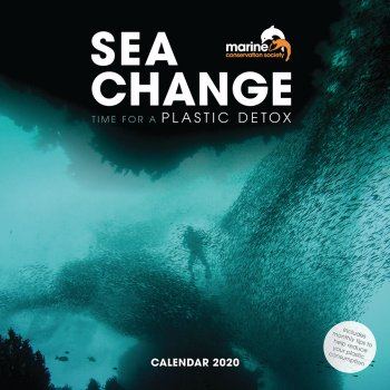 Sea Change MCS Wall Calendar