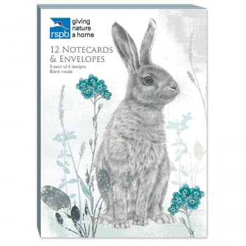 RSPB A6 Hare Notecards - Pack of 12
