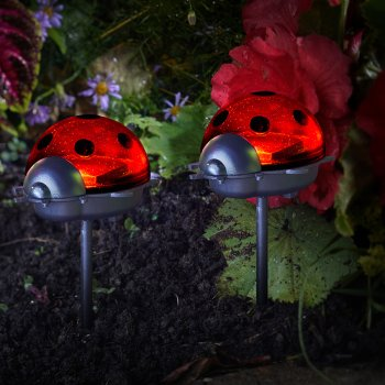 Solar Powered Ladybird Stake Light - Pack of 6