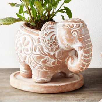 Terracotta Elephant Planter